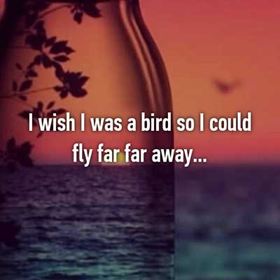 I wish i was a bird so I could fly away
